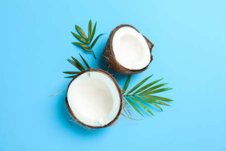 Split tropical coconut on color background, space for text