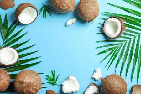 Tropical coconuts with palm branches on color background, space for text