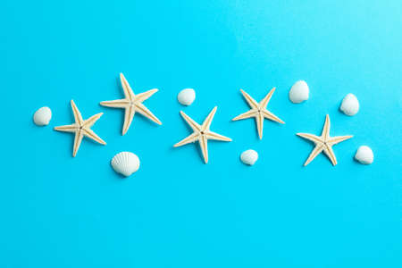 Flat lay composition with starfishes and seashells on color background, space for text 版權商用圖片