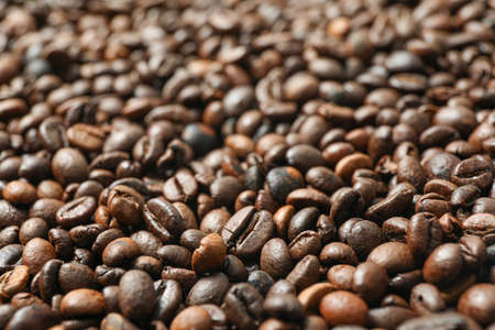 Many coffee beans as background, closeup and space for text
