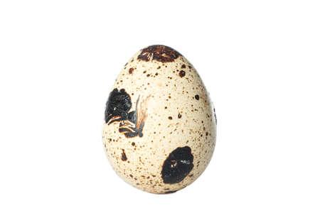 Raw quail egg isolated on white background Фото со стока