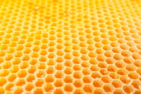 Waben mit süßem goldenem Honig auf dem ganzen Hintergrund, Nahaufnahme Standard-Bild