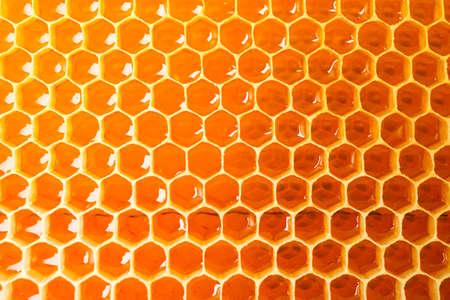 Panales con dulce miel dorada sobre todo el fondo, cerrar Foto de archivo