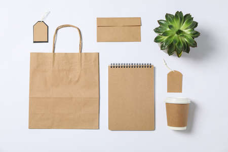 Flat lay composition with blank stationery, paper bag and succulent on white background, mockup