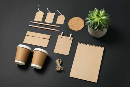 Composition with blank stationery and succulent on black background, mockup