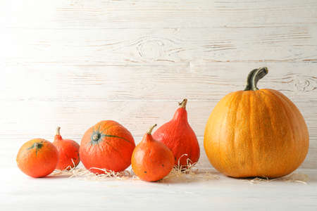 Pumpkins on white wooden background, space for text