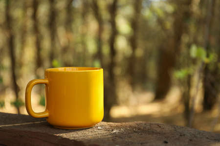 Yellow cup on board. Beautiful forest, space for text Stockfoto