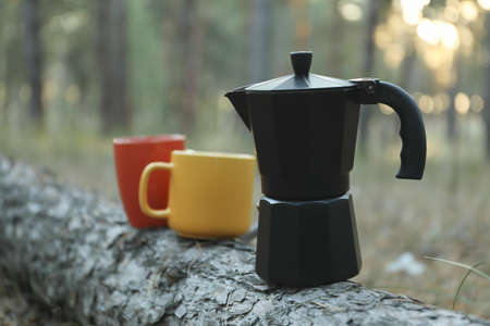 Coffee maker and cups on pine trunk. Beautiful forest, space for text