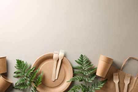 Concept with eco - friendly tableware and plant on grey background, copy space
