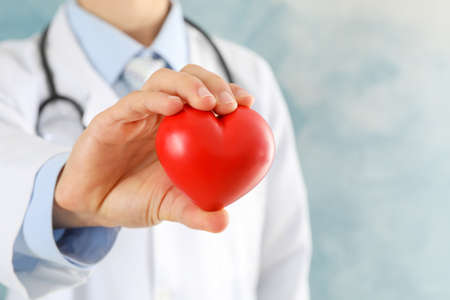 Doctor holds heart against blue background, close up
