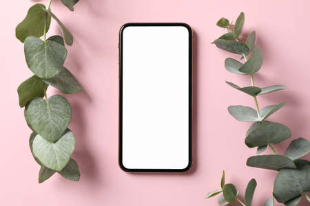Phone with empty screen and plant on pink background, top view Imagens