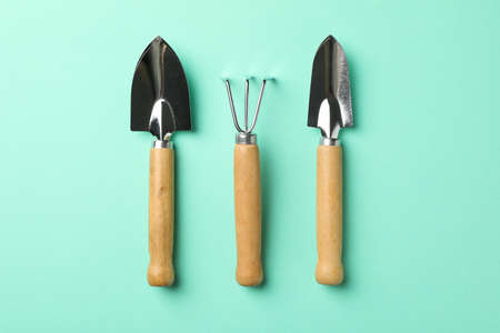 Gardening tools on mint background, top view