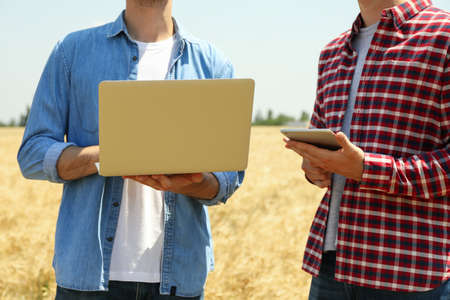 Young men with laptop in barley field. Agriculture business. Farming