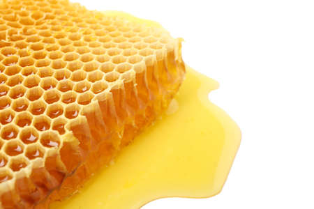 Fresh honeycomb isolated on white background, close up