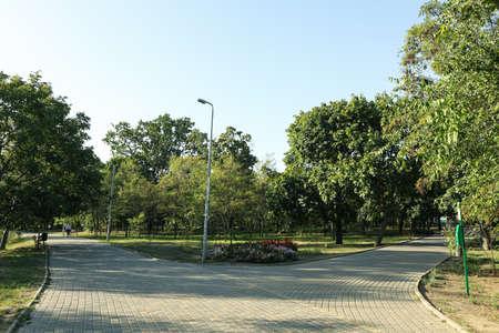 Beautiful city park in bright sunny morning
