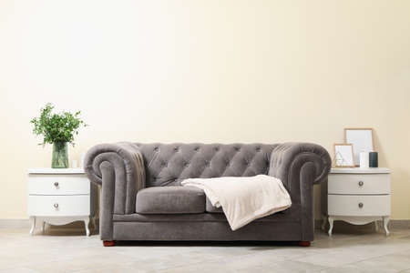 Cozy interior with sofa against light beige wall