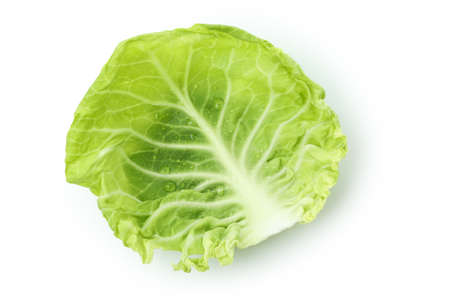 Fresh cabbage leaf isolated on white background Standard-Bild