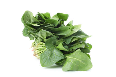 Raw fresh spinach isolated on white background