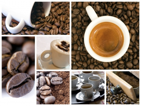 Coffee collage Stock Photo - 10290095