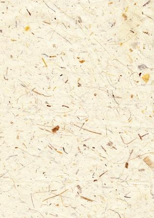 papier naturel: Texture de papier recycl�