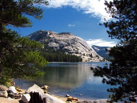 Yosemite National Park - California                                 photo