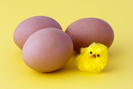 A little chick and three eggs on yellow background - Easter theme photo