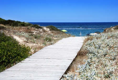A wooden pathway to access to the sea photo