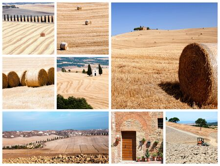 A collage of photos about tuscany - Italy photo