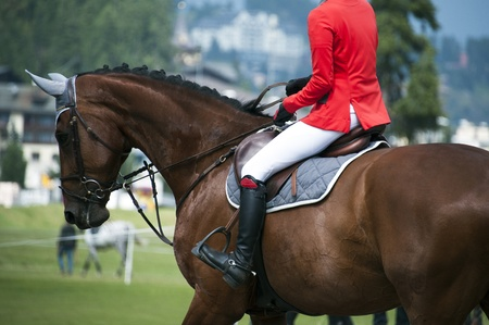red horse: horsewoman in uniform  at a jumping show