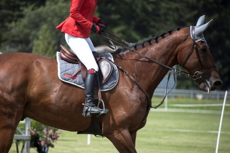 caballo jinete: horsewoman en uniforme en un salto de obstáculos