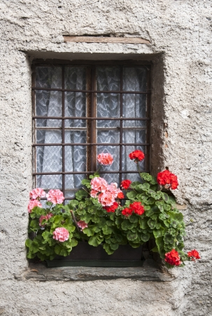 old windows with flowers decoration photo