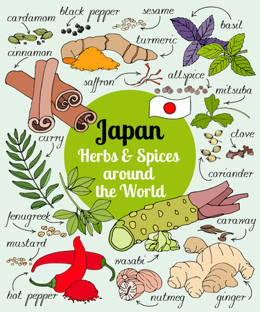 Vector set of hand drawn Japan herbs and spices.