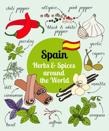 ベクターの手描きスペイン ハーブとスパイスのセット。