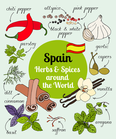 Vector set of hand drawn Spain herbs and spices.
