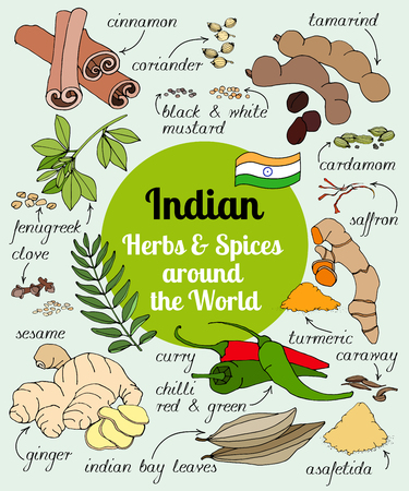 Vector set of hand drawn Indian herbs and spices. Ilustracja