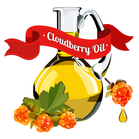 chicouté: stock vector illustration of cloudberry oil for food and cosmetic label and banner. Bottle of berry oil for cosmetic and medicine . Cranberry oil isolated on the white.