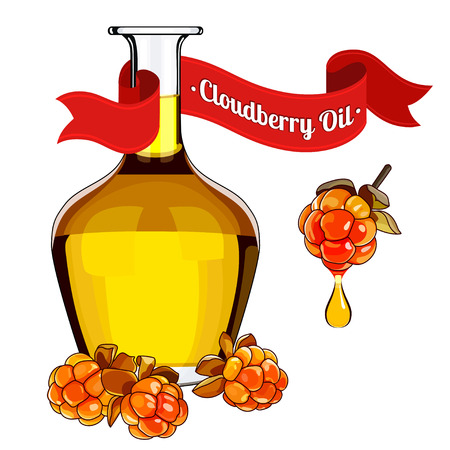 stock vector illustration of cloudberry oil for food and cosmetic label and banner. Bottle of berry oil for cosmetic and medicine . Cranberry oil isolated on the white.