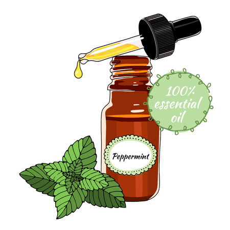 Bottle of peppermint essential oil with dropper. 向量圖像