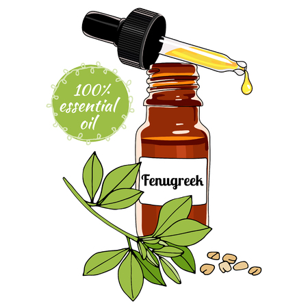Bottle of Fenugreek essential oil with dropper.