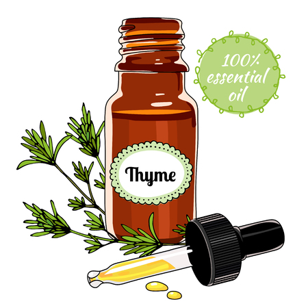 treatment plant: Bottle of Thyme essential oil with dropper. Illustration