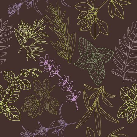 Herbs seamless pattern on a dark background. Food background. Herbs background. Hand-drawn herb background. Vector pattern of herbs. Background for food label. Pattern for herbs label.