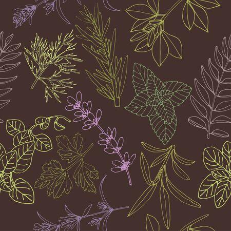 Kruiden naadloos patroon op een donkere achtergrond. Voedselachtergrond. Kruiden achtergrond. Handgetekende kruidenachtergrond. Vector patroon van kruiden. Achtergrond voor voedsel label. Patroon voor kruiden etiket.