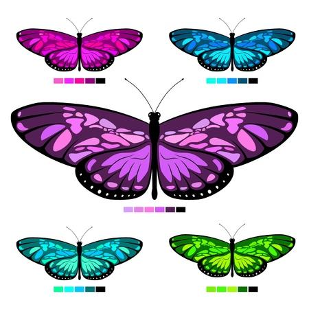 vector butterfly set 6 Stock Illustratie