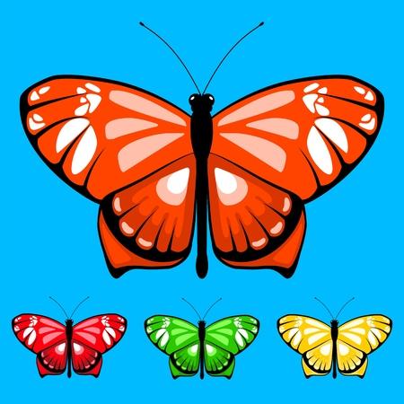 vector butterfly set 13