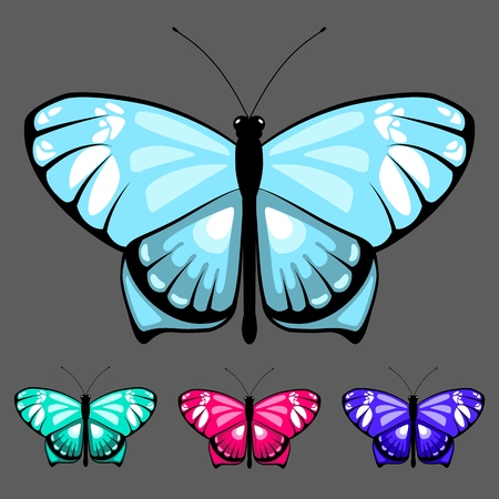 vector butterfly set 14