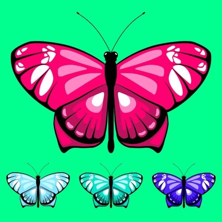 vector butterfly set 16