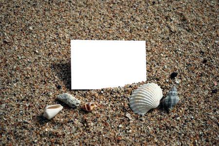 namecard: Blank namecard on sand beach with shell