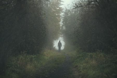 Caminando persona solitaria en un camino forrest en un día de niebla oscura y fría