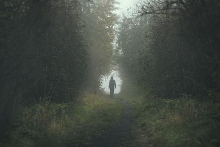 Walking lonely person on a forrest path in a dark and cold foggy day Stock Photo