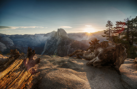 Half Dome and Yosemite Valley in Yosemite National Park during colorful sunset and old tree trunks